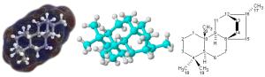 molekul